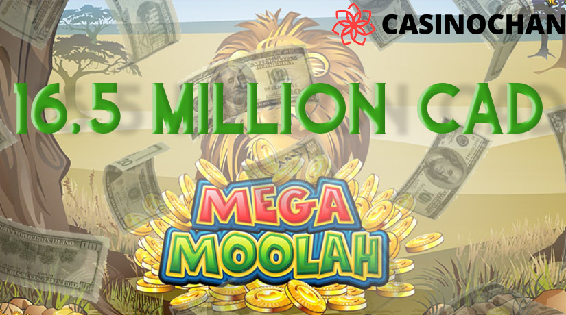 16.5 million cad win in mega moolah slot